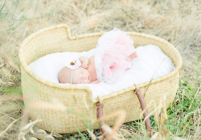 Rose Garden Lifestyle Newborn Session