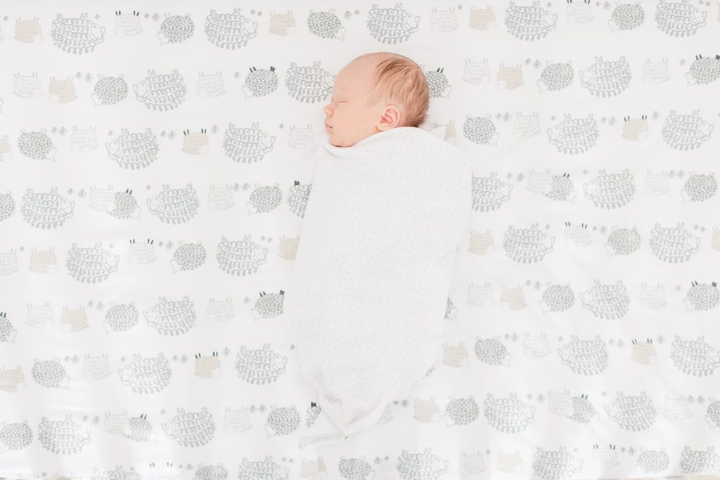 Santa Clara Lifestyle Newborn Photographer