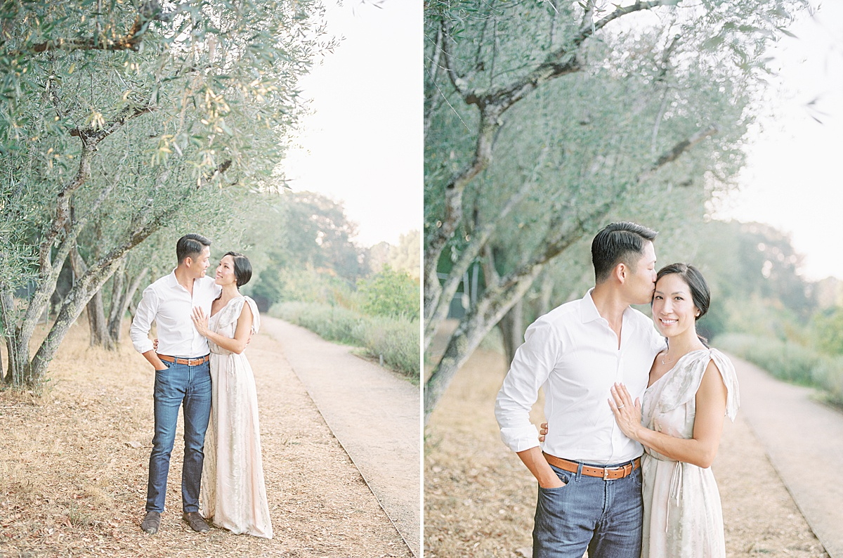 Olive Orchard Family Session